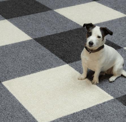 tapijt tegels