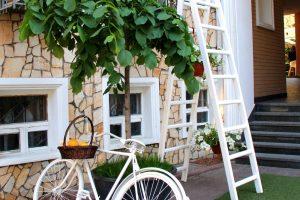 De beste tips om je tuin in te richten