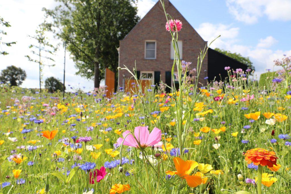 Een tuin om in te genieten