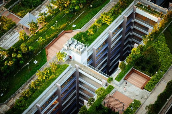 Groene tuin? Je kan het dak op!